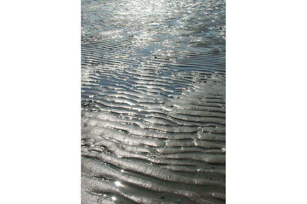 Spiaggianordolanda